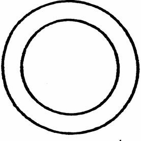 "Wichard 5mm X 21.5mm ""O"" Ring"