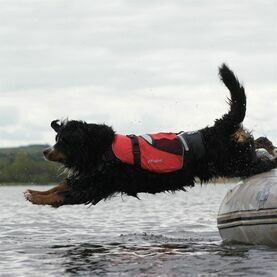Crewsaver Petfloat - Dog Life jacket