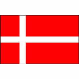 Talamex Danish Flag (20cm x 30cm)