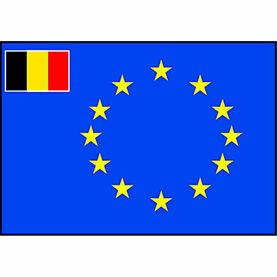 Talamex European Flag With Small Belgian Flag (20cm x 30cm)