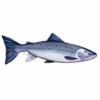 Fish Pillow - Atlantic Salmon 90cm