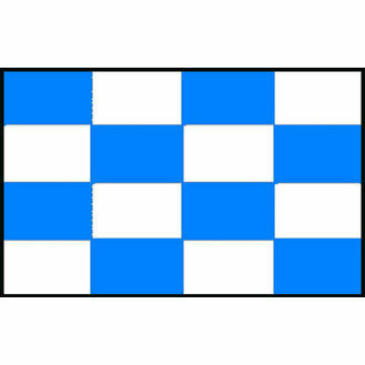 Talamex Signal Flag N (30cm x 36cm)