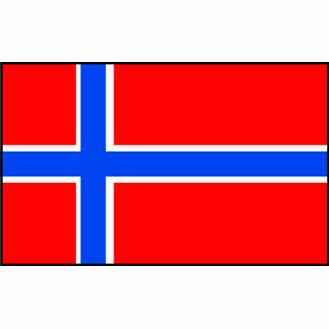 Talamex Norway Flag (20cm x 30cm)
