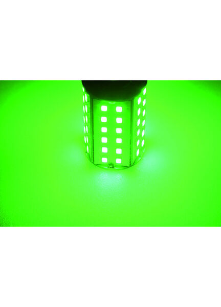 Talamex S-LED 60 10-30V Bay15D Green